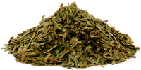 Yellow Cedar Leaves, Cut, 1 oz (Thuja occidentalis)