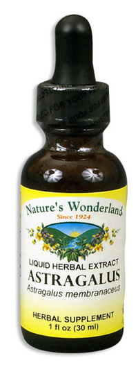 Astragalus Root Extract, 1 fl oz / 30ml  (Nature's Wonderland)