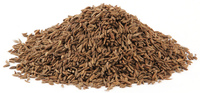 Kummel Seed, Whole, 4oz (Carum carvi)
