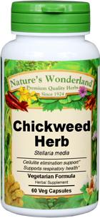 Chickweed Capsules - 475 mg, 60 Veg Capsules (Stellaria media)