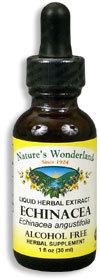 Echinacea Extract - Alcohol Free, 1 fl oz  / 30ml (Nature's Wonderland)