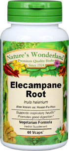 Elecampane Root Capsules - 675 mg, 60 Veg Capsules (Inula helenium)