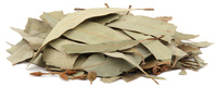 Eucalyptus Leaves, Whole, Organic 16 oz (Eucalyptus globulus)
