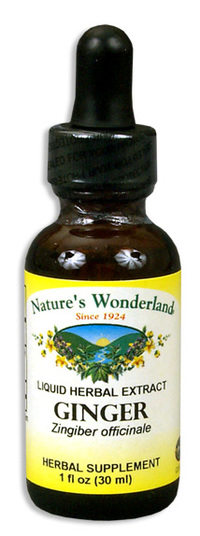 Ginger Extract, 1 fl oz / 30ml (Nature's Wonderland)