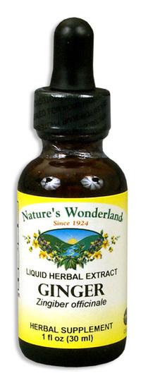 Ginger Extract, 1 fl oz / 30ml (Nature's Wonderland)