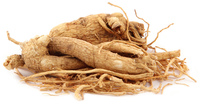 White Jenshen, Whole, 4 oz (Panax ginseng)