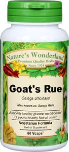 Goat's Rue Capsules - 375 mg, 60 Veg Capsules (Galega officinalis)