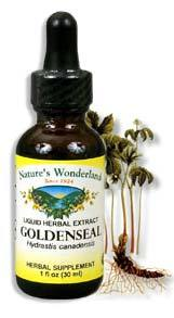 Golden Seal Root Extract, 1 fl oz  / 30 ml (Nature's Wonderland)