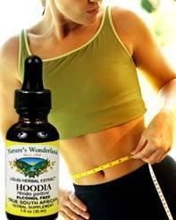 Hoodia Extract, Alcohol Free, 1 fl oz  / 30ml (Nature's Wonderland)