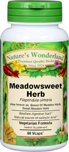 Queen of the Meadow Herb Capsules - 450 mg,  60 Vcaps™ (Filipendula ulmaria)
