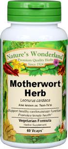 Motherwort Capsules - 375 mg, 60 Veg Capsules  (Leonurus cardiaca)