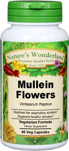 Mullein Flower Capsules - 500 mg, 60 Veg Capsules (Verbascum thapsus)