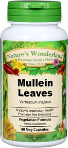 Mullein Leaf Capsules - 475 mg, 60 Veg Capsules (Verbascum thapsus)