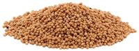 Mustard Seed, Yellow, Whole, 1 oz (Sinapis alba)