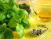 Lemon Balm Herb, Cut, 1 oz  (Melissa officinalis)