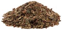 Pipsissewa Herb, Cut, 1 oz (Chimaphila umbellata)