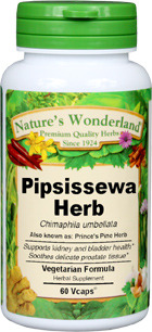 Prince's Pine Herb Capsules - 625 mg, 60 Veg Capsules (Chimaphila umbellata)