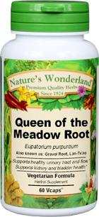 Queen of the Meadow Root Capsules - 475 mg, 60 Vcaps™ (Eupatorium purpureum)