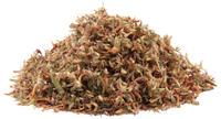 Red Clover Blossoms, Cut, 1 oz (Trifolium pratense)