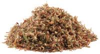 Red Clover Blossoms, Cut, Organic 4 oz (Trifolium pratense)