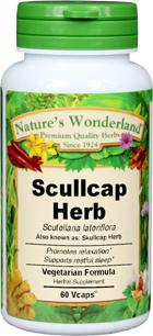 Scullcap Capsules - 400 mg, 60 Vcaps™ (Scutellaria lateriflora)