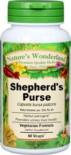 Shepherd's Purse Capsules - 425 mg, 60 Veg Capsules  (Capsella bursa pastoris)