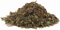 Partridge Berry Herb, Cut, 1 oz (Mitchella repens)