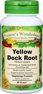 Curled Dock Capsules - 625 mg, 60 Veg Capsules (Rumex crispus)