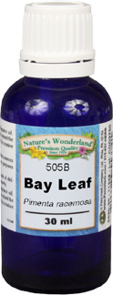 Bay Leaf Essential Oil - 30 ml (Pimenta racemosa)