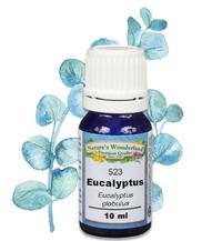 FREE GIFT: Eucalyptus Essential Oil - 10 ml (Eucalyptus globulus)
