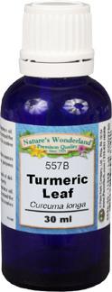 Turmeric Leaf Oil - 30 ml (Curcuma longa)