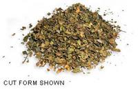 Creosote Bush Capsules - 450 mg, 60 Vcaps™ (Larrea mexicana)
