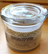 Eucalyptus Soy Candle, 10 oz (Zia Company)