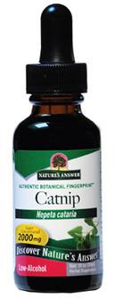 Catnip Liquid Extract - Nepeta cataria, 1 fl oz / 30ml (Nature's Answer)