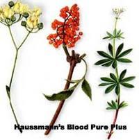 Haussmann's Blood Pure Plus Formula #2, 4 oz (Nature's Wonderland)
