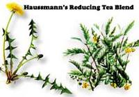 Haussmann's Reducing Tea Formula  #6, 4 oz (Nature's Wonderland)