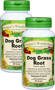 Dog Grass Capsules - 550 mg, 60 Veg Capsules each (Triticum repens)