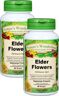 Elder Flowers Capsules - 500 mg, 60 Vcaps™ each (Sambucus nigra)