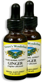 Ginger Root Extract, 1 fl oz / 30 ml each (Nature's Wonderland)
