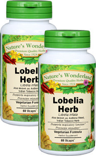 Lobelia Herb Capsules - 500 mg, 60 Vcaps™ each (Lobelia inflata)