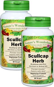 Scullcap Capsules - 400 mg, 60 Vcaps™ each (Scutellaria lateriflora)