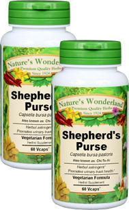 Shepherd's Purse Capsules - 425 mg, 60 Veg Capsules each (Capsella bursa pastoris)