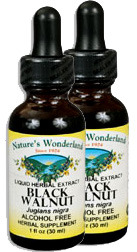 Black Walnut Hulls Extract, Alcohol Free, 1 fl oz / 60ml (Nature's Wonderland)