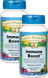 Immune Boost™ - 600 mg, 60 Veg Capsules each  (Nature's Wonderland)