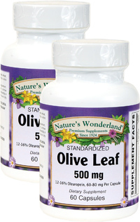 Olive Leaf Standardized Extract 500 mg, 60 Capsules each (Nature's Wonderland)