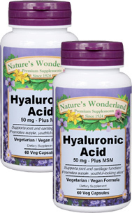 Hyaluronic Acid with MSM - 50 mg, 60 Veg Capsules each  (Nature's Wonderland)
