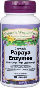 Papaya Enzymes, 120 chewable lozenges (Nature's Wonderland)
