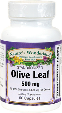 Olive Leaf Standardized Extract - 500 mg, 60 Capsules (Nature's Wonderland)
