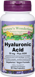 Hyaluronic Acid With MSM, 60 Veg Capsules (Nature's Wonderland)