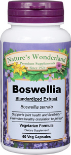 Boswellia Standardized Extract - 500 mg, 60 Vcaps™ (Nature's Wonderland)